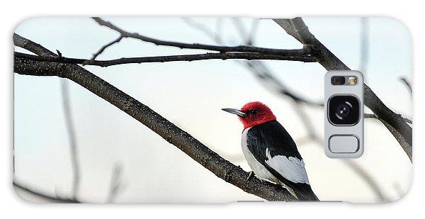 Red-headed Woodpecker Galaxy Case