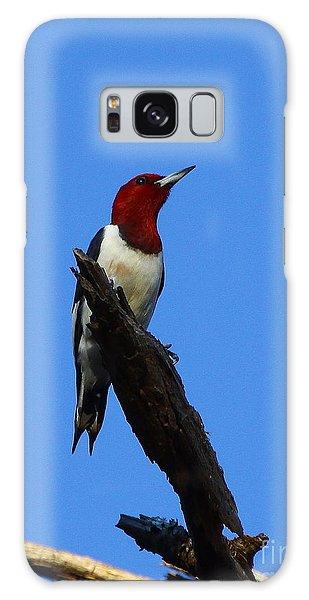 Red Headed Woodpecker On A Snag Galaxy Case