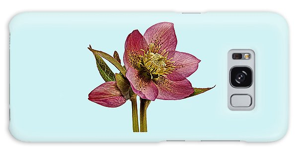 Galaxy Case featuring the photograph Red Hellebore Blue Background by Paul Gulliver