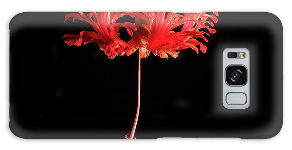 Hibiscus Galaxy Case - Red Hibiscus Schizopetalus On Black by Christopher Johnson