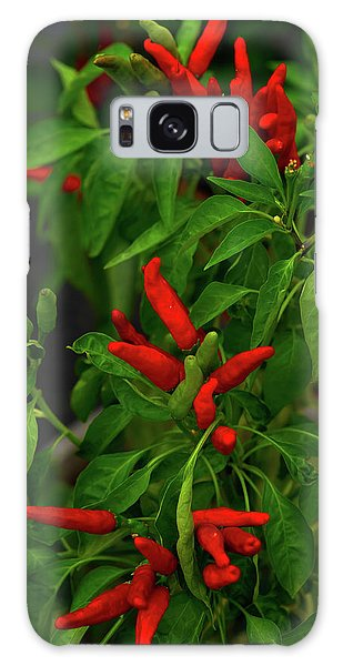 Red Hot Chili Peppers Galaxy Case