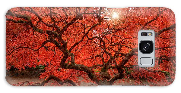 Tree Galaxy Case - Red Lace by Dan Mihai