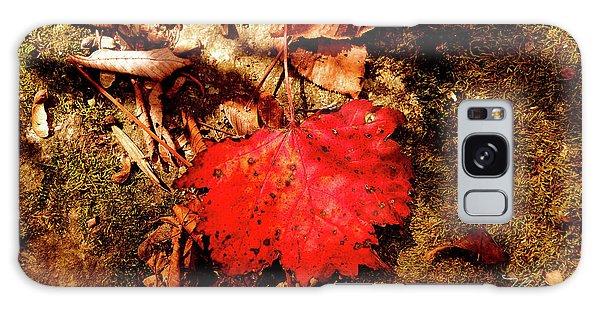 Red Leaf On Mossy Rock Galaxy Case