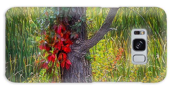 Red Leaves And Vines On Tree In Forest Of Reeds Galaxy Case