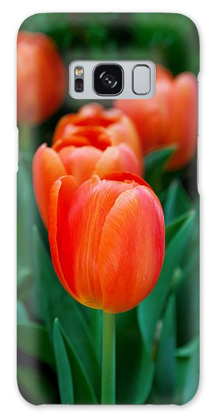 Calendar Galaxy Case - Red Tulips by Az Jackson