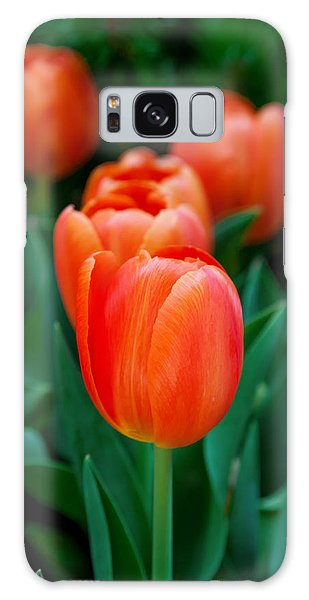March Galaxy Case - Red Tulips by Az Jackson