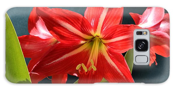 Red Lily Flower Trio Galaxy Case