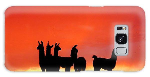 Red Llama Sunset 1 Galaxy Case