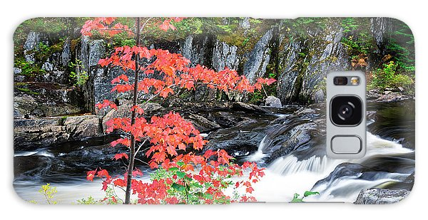 Galaxy Case featuring the photograph Red Maple Gulf Hagas Me. by Michael Hubley