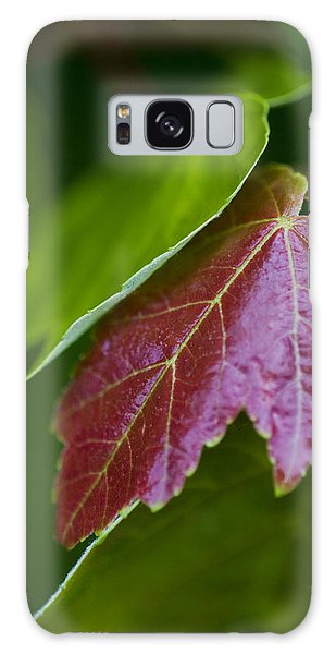 Red Maple Leaf Galaxy Case