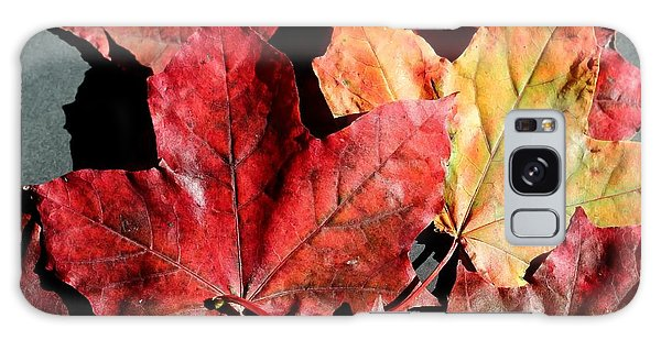 Red Maple Leaves Digital Painting Galaxy Case by Barbara Griffin