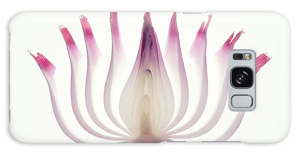 Layers Galaxy Case - Red Onion Translucent Peeled Layers by Johan Swanepoel