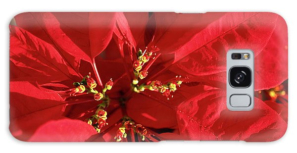 Red Poinsettia Macro Galaxy Case by Sally Weigand
