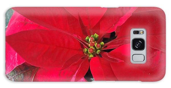 Red Poinsettia Galaxy Case