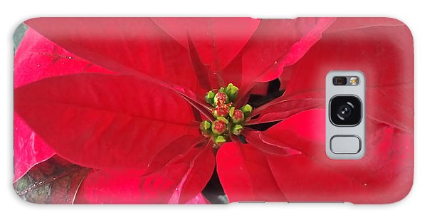 Red Poinsettia Galaxy Case