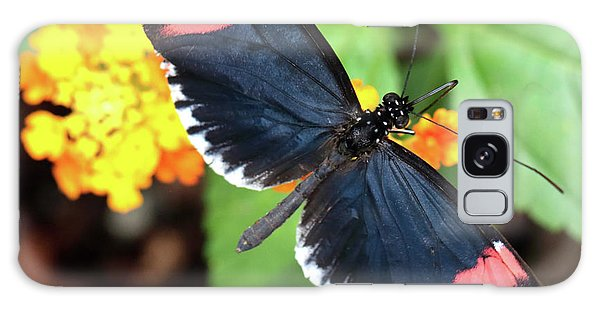 Red Postman Butterfly Feeding Galaxy Case