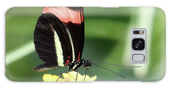 Red Postman Butterfly Heliconius Erato Cyrbia Galaxy Case