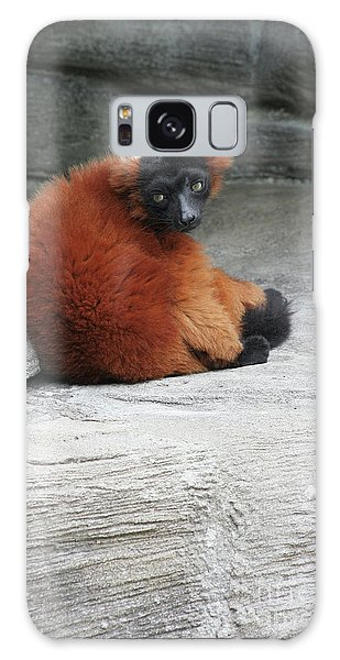 Red Ruffed Lemur Galaxy Case