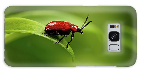 Red Scarlet Lily Beetle On Plant Galaxy Case