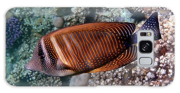Red Sea Sailfin Tang 3 Galaxy Case