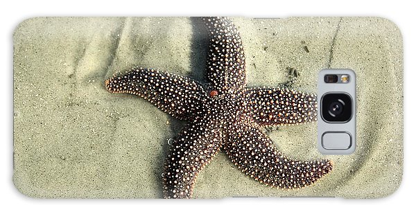 Red Sea Star Galaxy Case