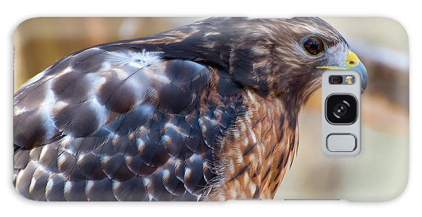 Red Shouldered Hawk 2 Galaxy Case by Chris Flees