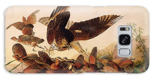 Red Shouldered Hawk Attacking Bobwhite Partridge Galaxy Case