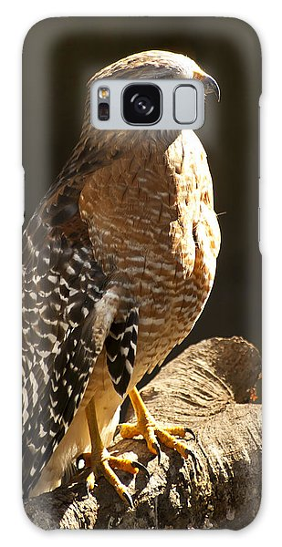 Galaxy Case featuring the photograph Red-shouldered Hawk by Carolyn Marshall