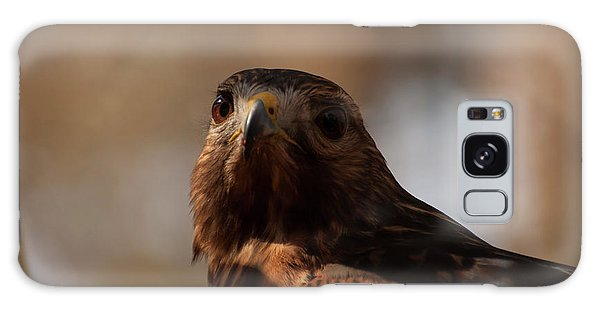 Red Shouldered Hawk Close Up Galaxy Case by Chris Flees