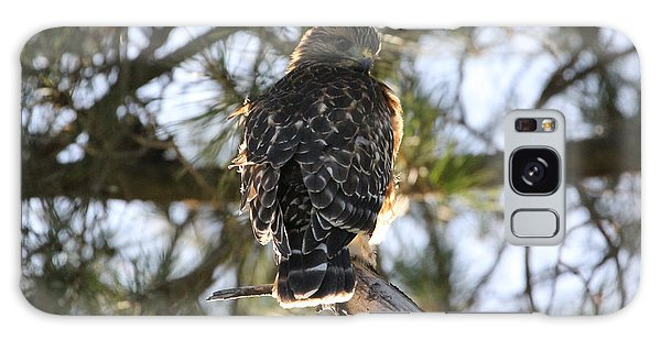 Red Shouldered Hawk Fledgling Galaxy Case