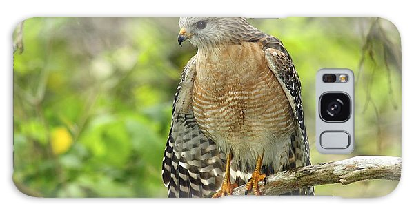 Red-shouldered Hawk Galaxy Case