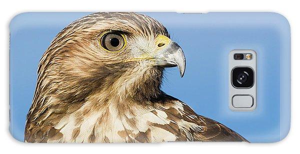 Red-shouldered Hawk Portrait - Winged Ambassador Galaxy Case