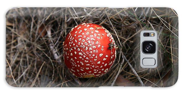 Red Spotty Toadstool Galaxy Case