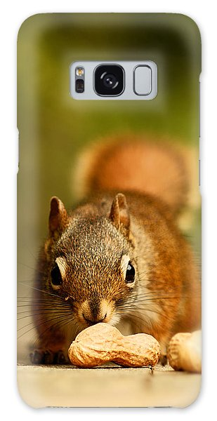 Red Squirrel   Galaxy Case by Cale Best