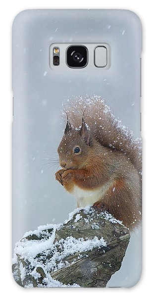 Red Squirrel In A Blizzard Galaxy Case