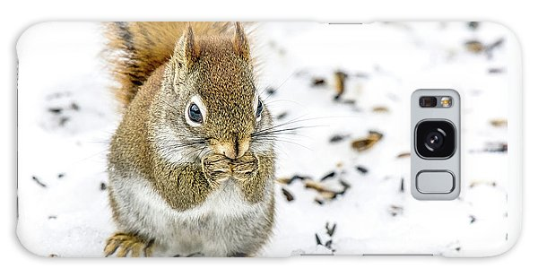 Red Squirrel Galaxy Case by Irwin Seidman