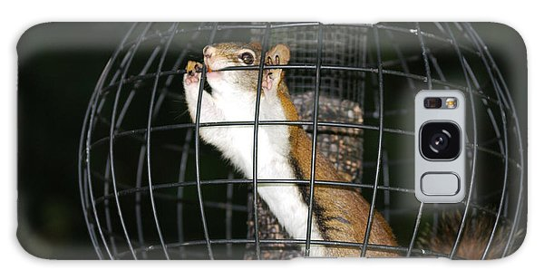 Red Squirrel Jail Galaxy Case