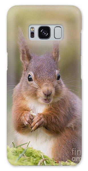 Red Squirrel - Scottish Highlands #18 Galaxy Case