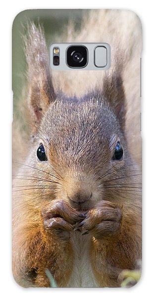 Red Squirrel - Scottish Highlands #28 Galaxy Case