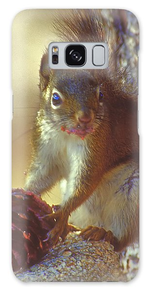 Red Squirrel With Pine Cone Galaxy Case