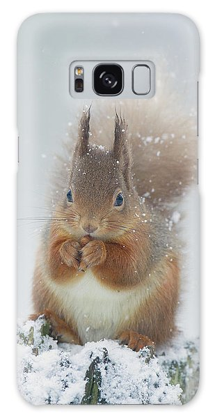 Red Squirrel With Snowflakes Galaxy Case