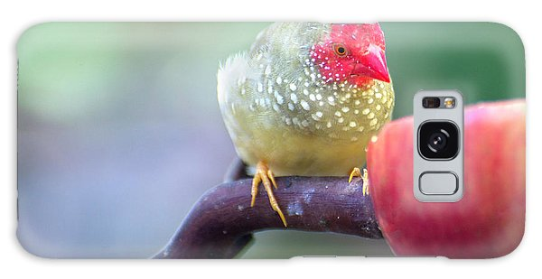 Red Star Finch Galaxy Case