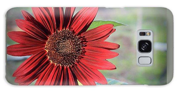 Red Sunflower Galaxy Case