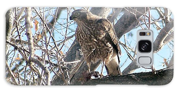 Red Tail Hawk Galaxy Case