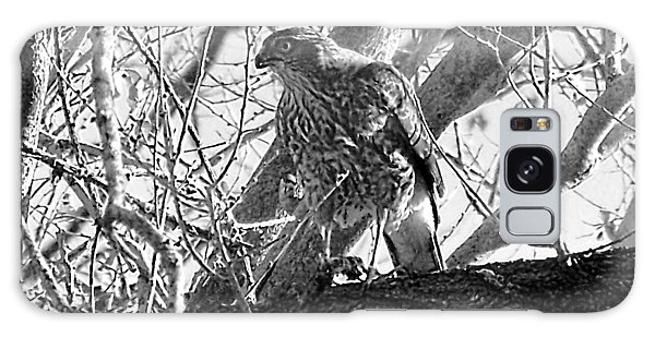 Red Tail Hawk In Black And White Galaxy Case