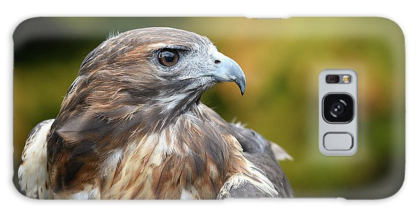 Galaxy Case featuring the photograph Red Tail Hawk by Michael Hubley