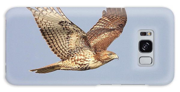 Red Tailed Hawk 20100101-1 Galaxy Case