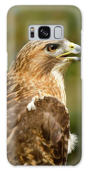 Red-tailed Hawk Close-up Galaxy Case by Ann Bridges