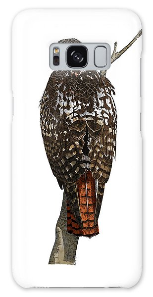 Red-tailed Hawk - Color Galaxy Case
