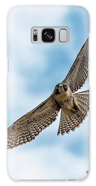 Red-tailed Hawk Coming At Me Galaxy Case by Stephen  Johnson